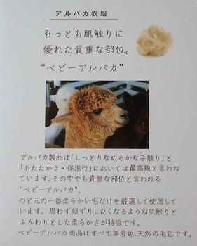 d3.alpaca p5.jpg