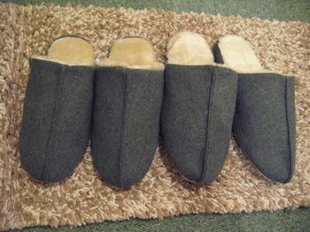 roomshoes (1).jpg
