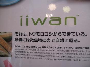 iiwan pop.jpg